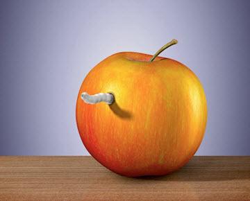 Apple-worm-small